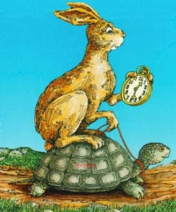 Turtle-rabbit2